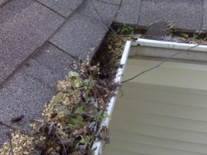 Home Inspection Carmel Gutter Cleaning Carmel Roof