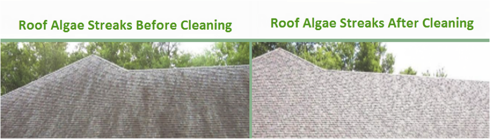 Eliminate Algae And Moss Streaks On Your Roof
